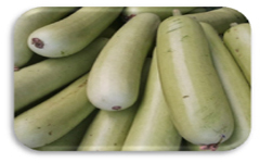 bottle gourd is heart friendly