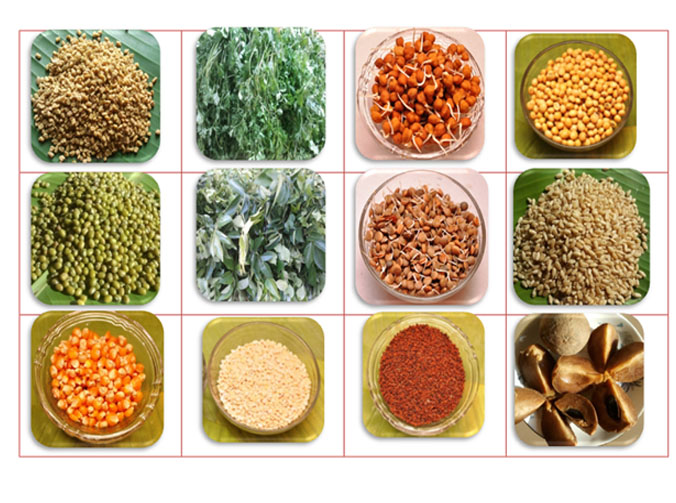 Garbhakranti fibre  rich foods during pregnancy