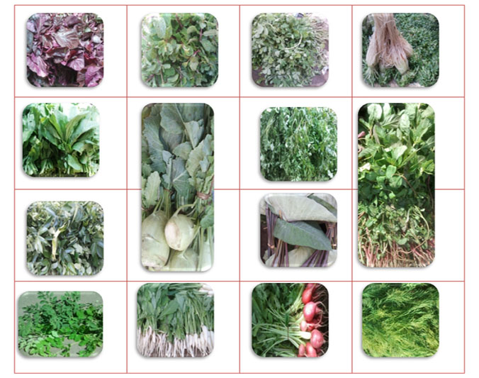 Garbhakranti green leafy vegetables during pregnancy
