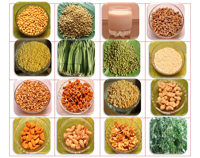 Garbhakranti protein  rich foods during pregnancy