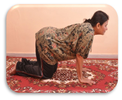 Marjarasana in pregnancy